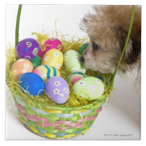 A mixed breed puppy sniffing at an Easter basket Tile