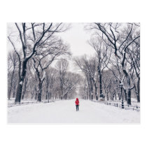 A Modern Little Red Riding Hood in Central Park Postcard