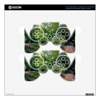 A Moment in Time I PS3 Controller Skin