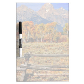 A Moment in Wyoming in Autumn Dry-Erase Board