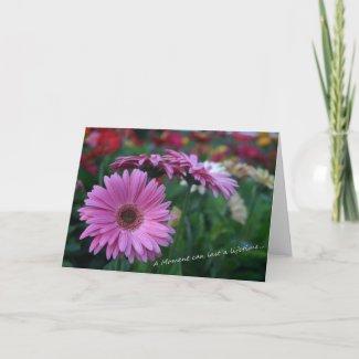 A Moment Pink Gerber Daisies card