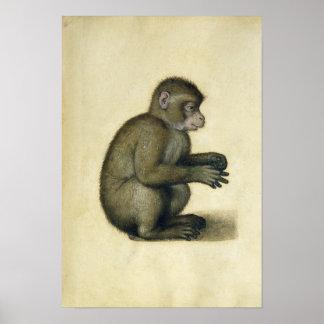 A Monkey Print