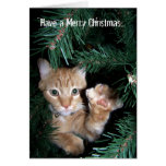 A Monster in a Christmas Tree Cards