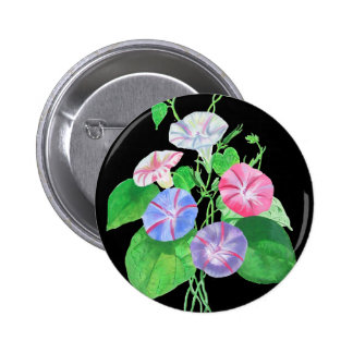 A Morning Glory Button