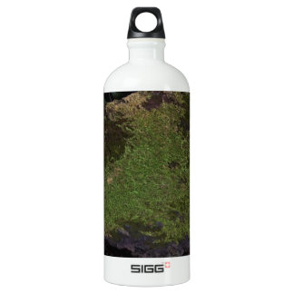 A moss covered stone water bottle