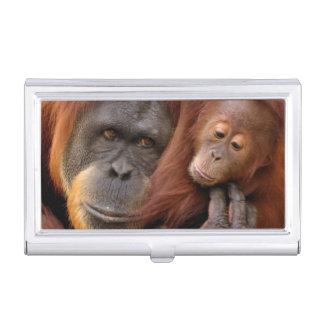 A mother and baby orangutan share a hug. business card case