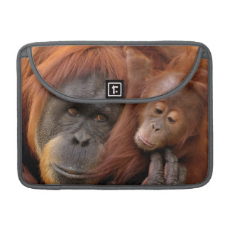 A mother and baby orangutan share a hug. MacBook pro sleeve
