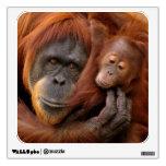 A mother and baby orangutan share a hug. wall decal