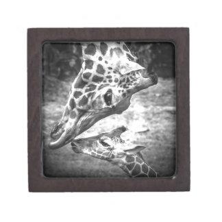 A mother s Love Premium Trinket Box