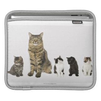 A mother with her four kittens sitting together sleeve for iPads