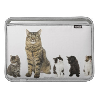 A mother with her four kittens sitting together sleeve for MacBook air