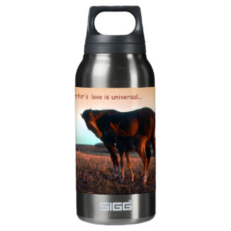 A mother's love insulated water bottle