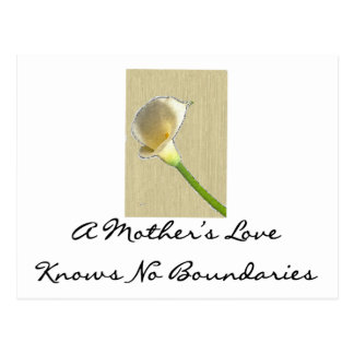 A Mother's Love Knows No Boundaries Postcard