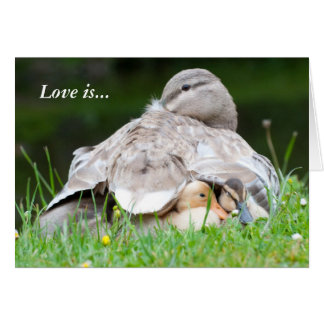 A Mother's Love: Love is Greeting Cards