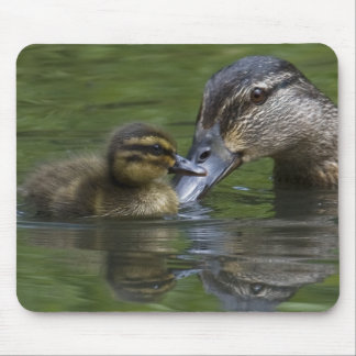 A Mother's Love Mouse Pad
