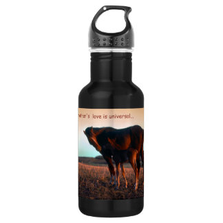 A mother's love water bottle