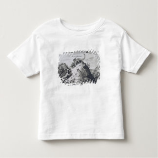 A Mountain in the Jiangxi Province with Crags Know T-shirt