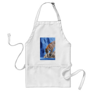 A mountain lion at the waterfall adult apron
