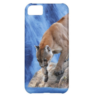 A mountain lion at the waterfall cover for iPhone 5C