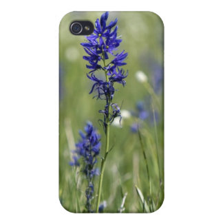 A mountain meadow of wildflowers including covers for iPhone 4