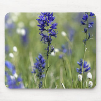 A mountain meadow of wildflowers including mouse pad