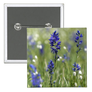 A mountain meadow of wildflowers including pinback button