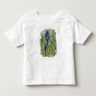 A mountain meadow of wildflowers including t shirt