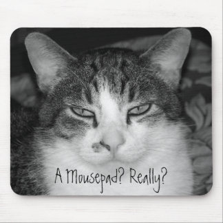 """A Mousepad? Really?"" Crabby Cat Mousepad"