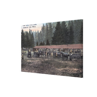 A Mule Team at Camp Lewis Stretched Canvas Prints
