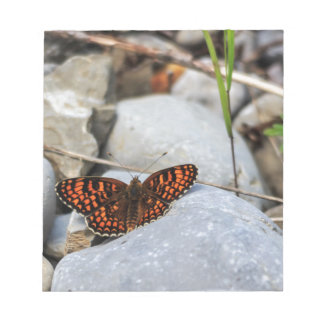A multicolored butterfly notepad