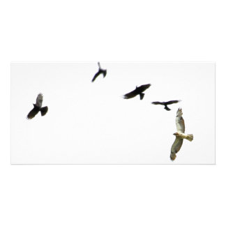 A Murder of Crows Card