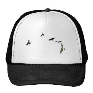 A Murder of Crows Trucker Hat