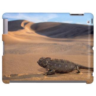 A Namaqua Chameleon walking