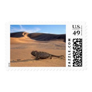 A Namaqua Chameleon walking Postage
