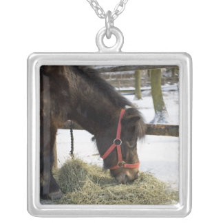 A native horse originally from Gotland where Silver Plated Necklace