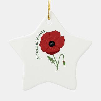 A Natural Beauty Christmas Ornaments