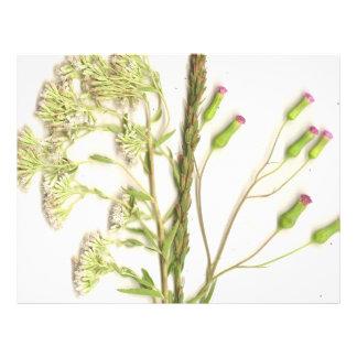A neat scanned image of flowers letterhead