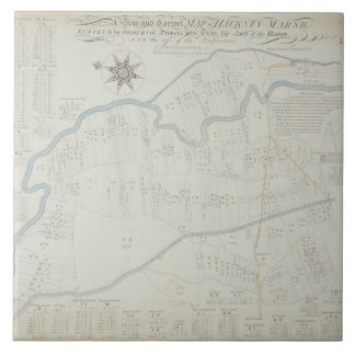 A New and Correct Map of Hackney Marsh, 1745 (lith Tiles
