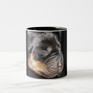 A New Arrival - Rottweiler Puppy Coffee Mugs