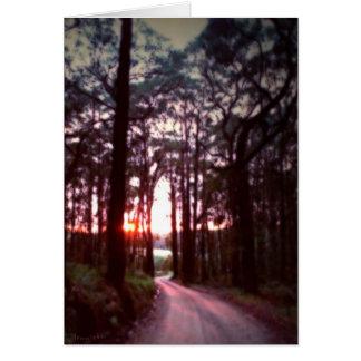 A New Dawn  Card