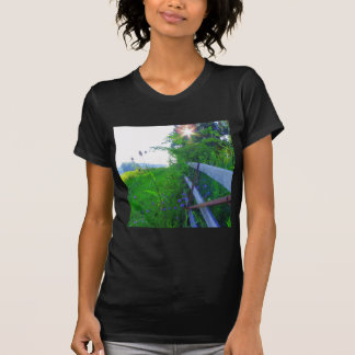 A new day dawning t-shirt