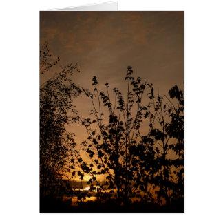 A New Day Dawns | Card