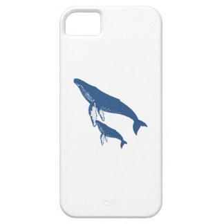 A NEW ERA iPhone SE/5/5s CASE