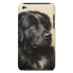 Case-Mate iPod Touch Barely There Case with Newfoundland Phone Cases design