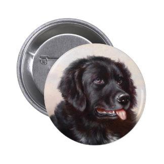 A Newfoundlander Button
