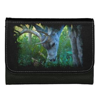 A Nice Buck 2 Wallet For Women