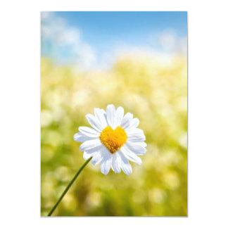 A nice heart shaped flower on A postcard