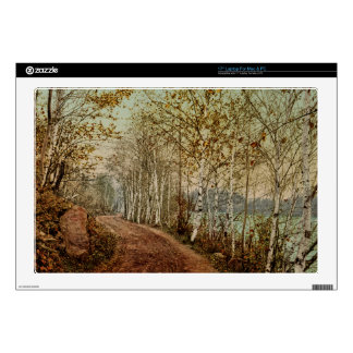 "A Northern Autumn 1898 17"" Laptop Skin"