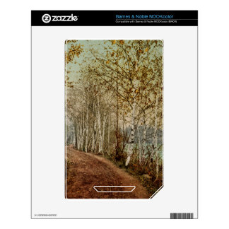 A Northern Autumn 1898 NOOK Color Decals