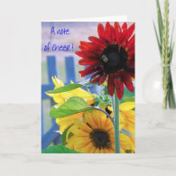 A note of cheer! - Photo Greeting Card
